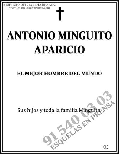 Antonio Minguito Aparicio